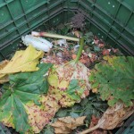 Kompost mit großen Blättern bedeckt