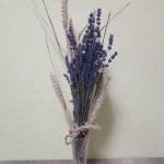 tipps und tricks f r trockenblumen gartenmoni altes wissen bewahren. Black Bedroom Furniture Sets. Home Design Ideas