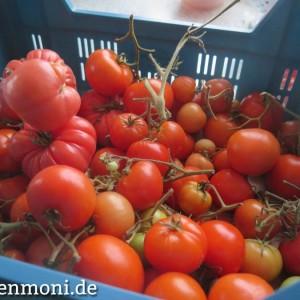 nachgereifte tomaten november gartenmoni altes wissen bewahren. Black Bedroom Furniture Sets. Home Design Ideas