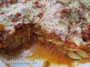 Zucchini-Soja-Lasagne-2
