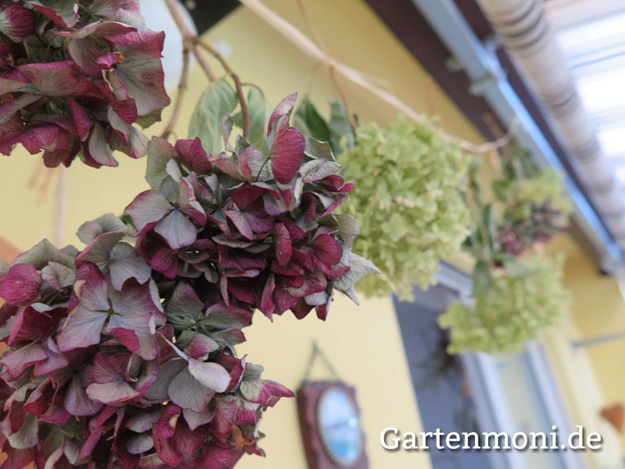 Gut bekannt Hortensien trocknen und verzieren - Gartenmoni - Altes Wissen bewahren AQ77