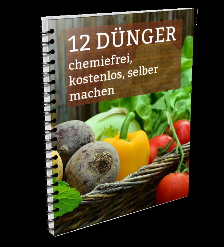 12 kostenlose und chemiefreie Düngemittel aus dem Haushalt