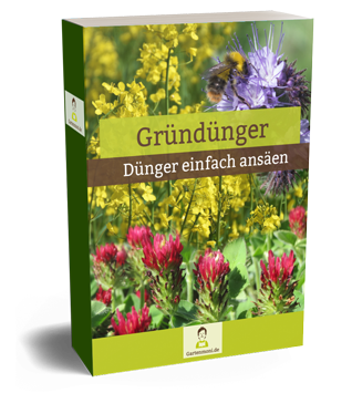 Gründüngung Ebook Cover